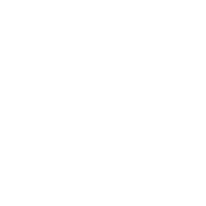managedservices.co.uk Icon Whiteout